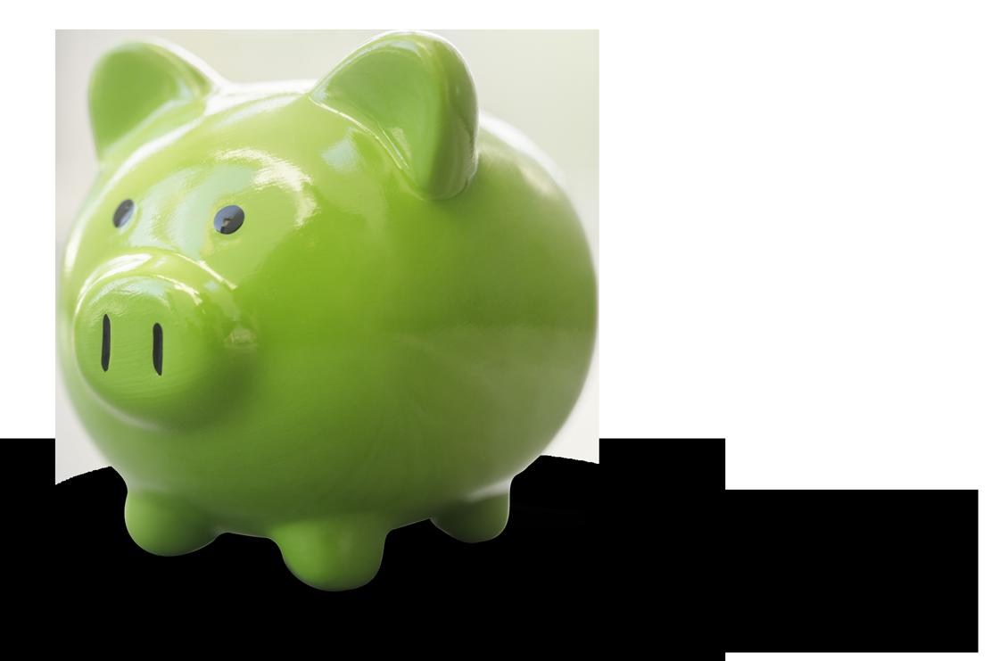 Save Money Piggy Bank
