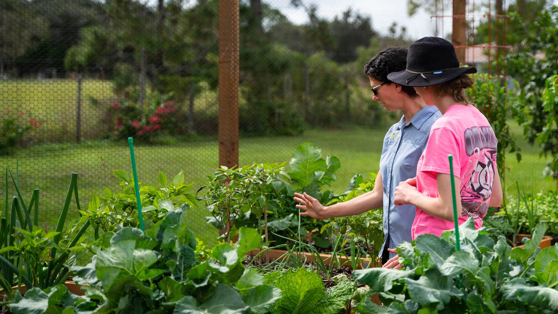 Gardening team