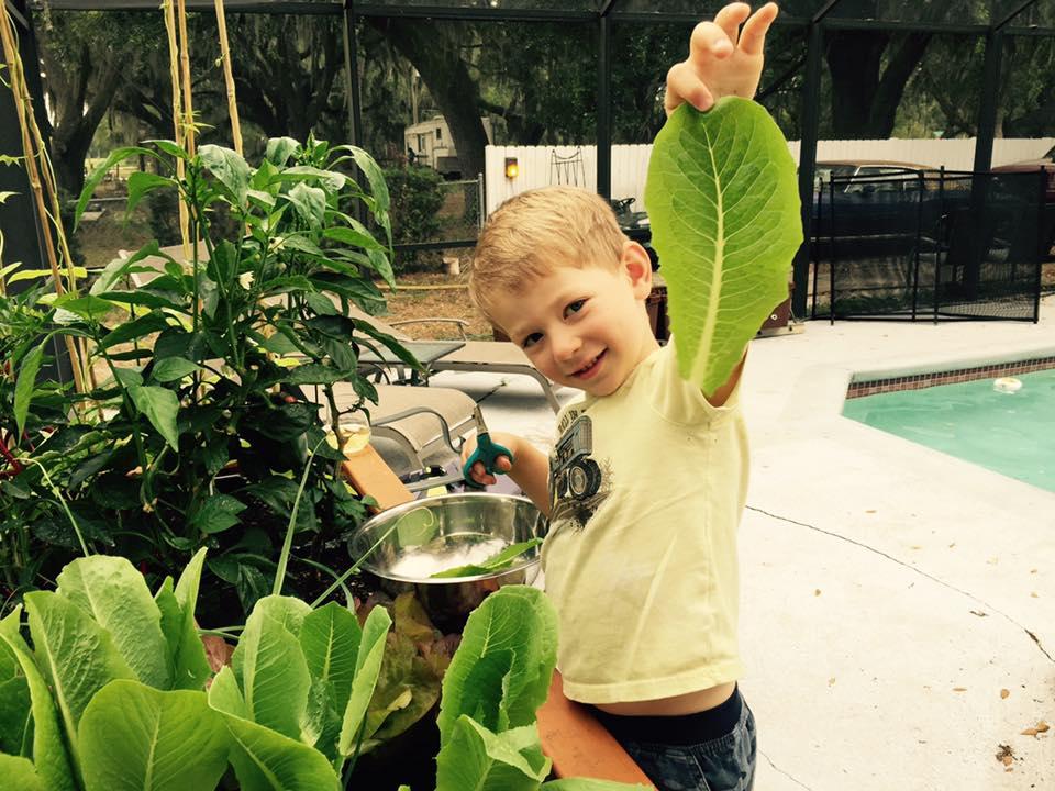 Kid holding lettuce leaf
