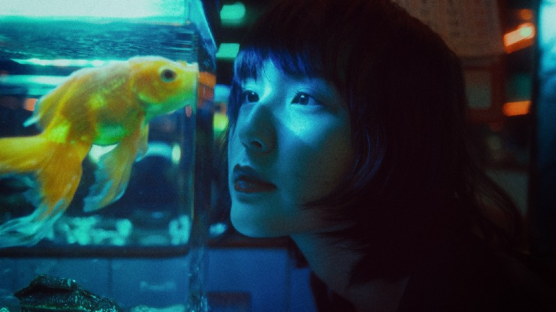 Woman looking at fish tank