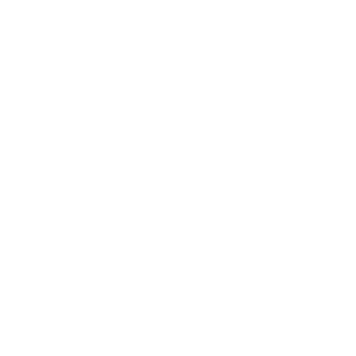 Julie's bicycle