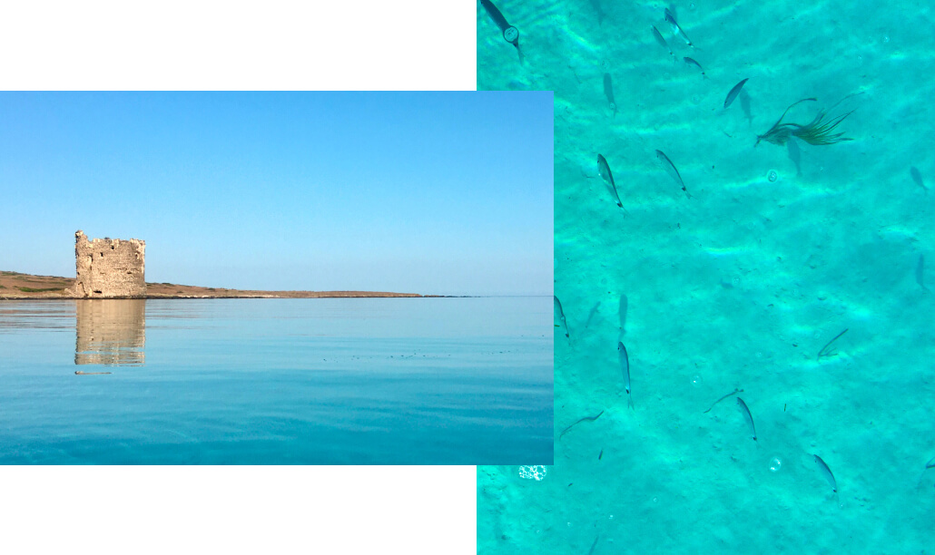 Reference images from Sardinia