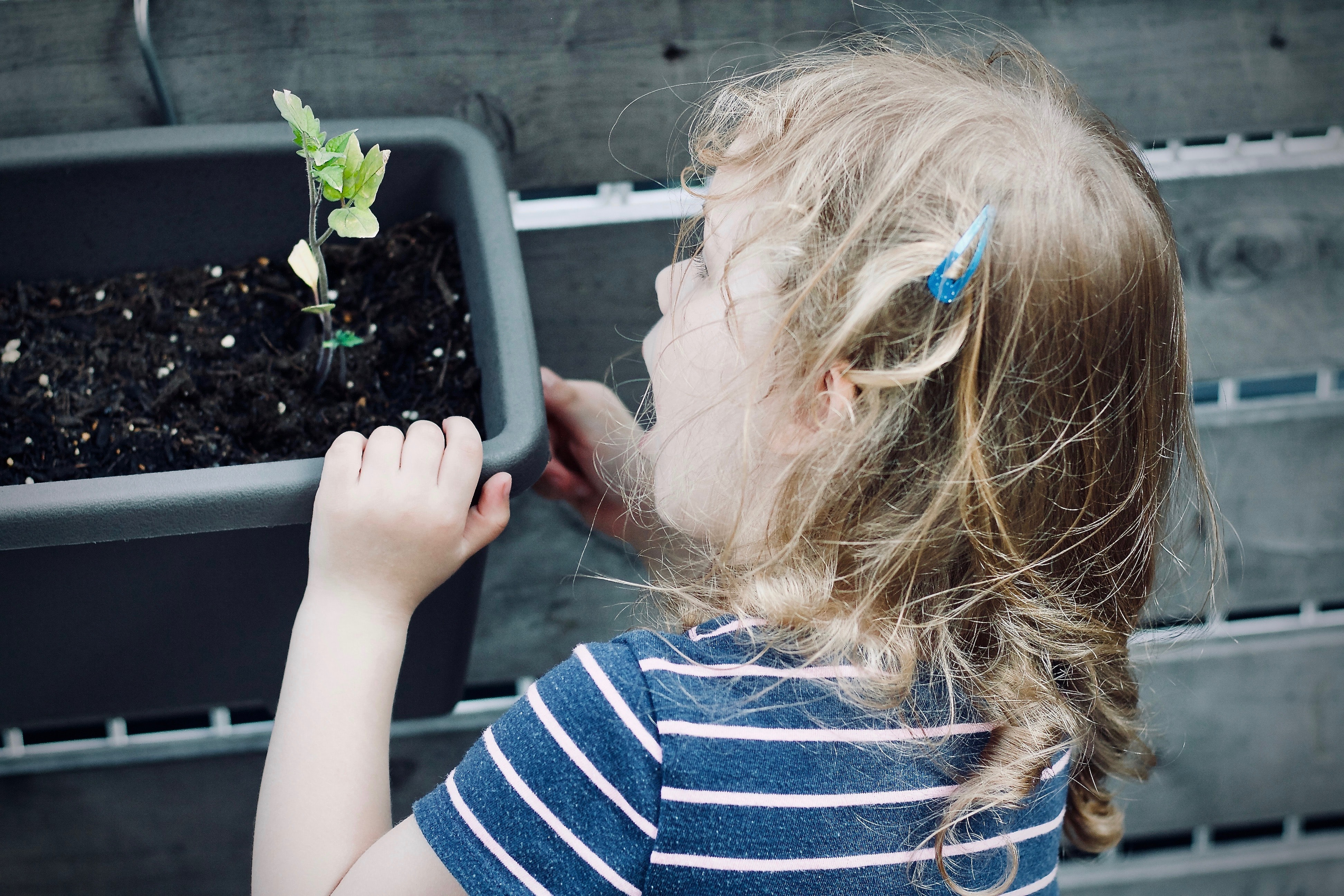 Roots of success that grow at home: How to ensure the Sustainable Skills Development for children with Neurodiversity