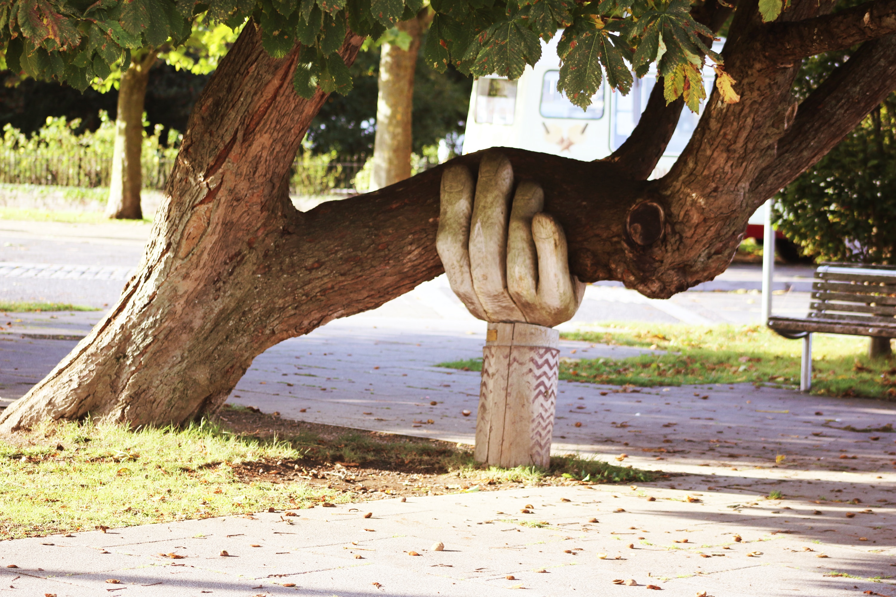 Tree held by a hand statue