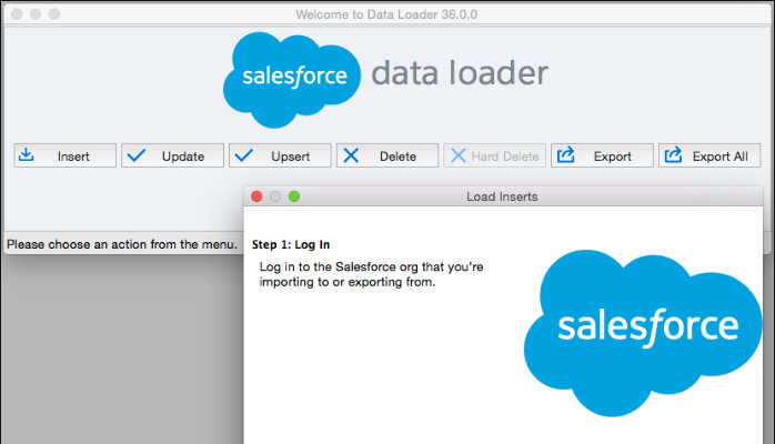 Salesforce Interface