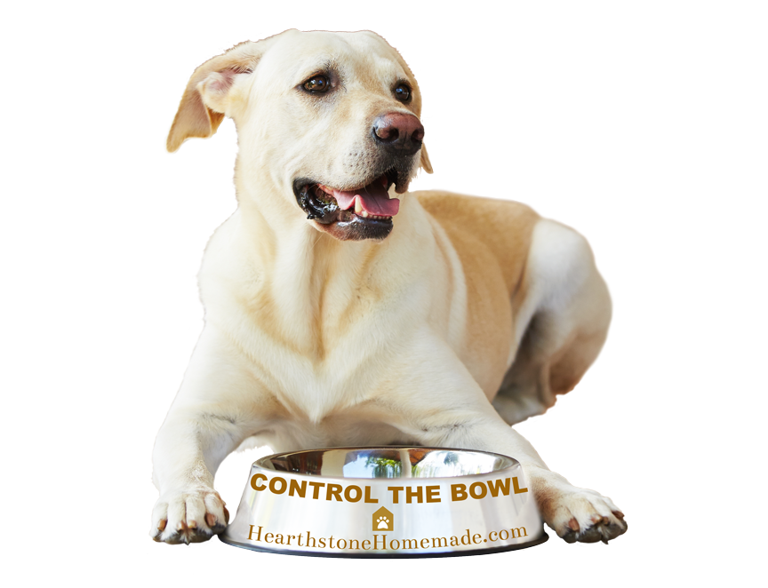 "A friendly dog sits with his dog food bowl. The text on the bowl says ""control the bowl."""
