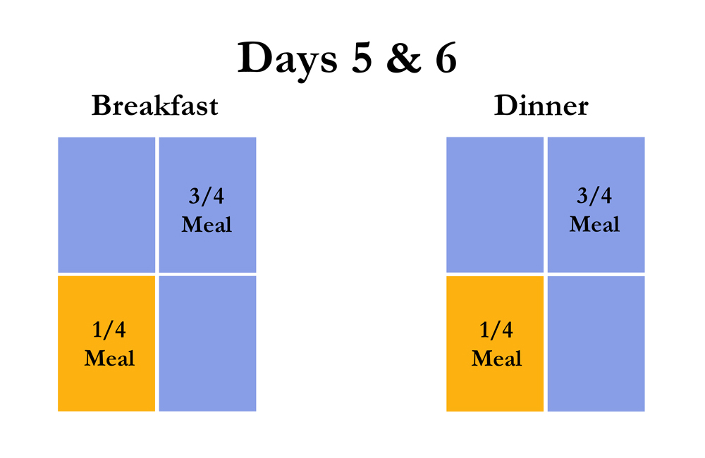 Chart shows on days 5 & 6 use 3/4 new food and 1/4 old food