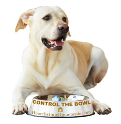 """A friendly dog sits with his dog food bowl. The text on the bowl says """"control the bowl."""""""
