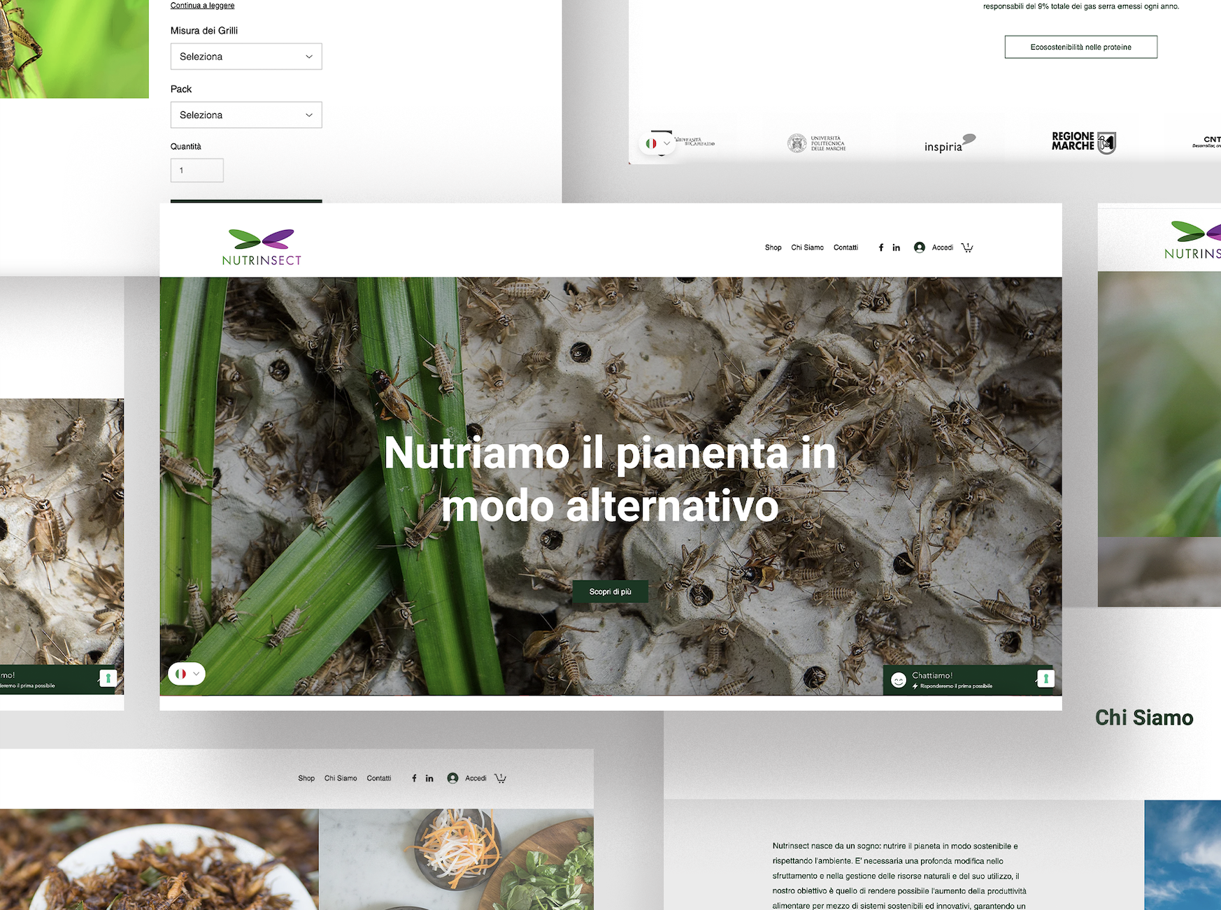Ecommerce development for insects breeding company