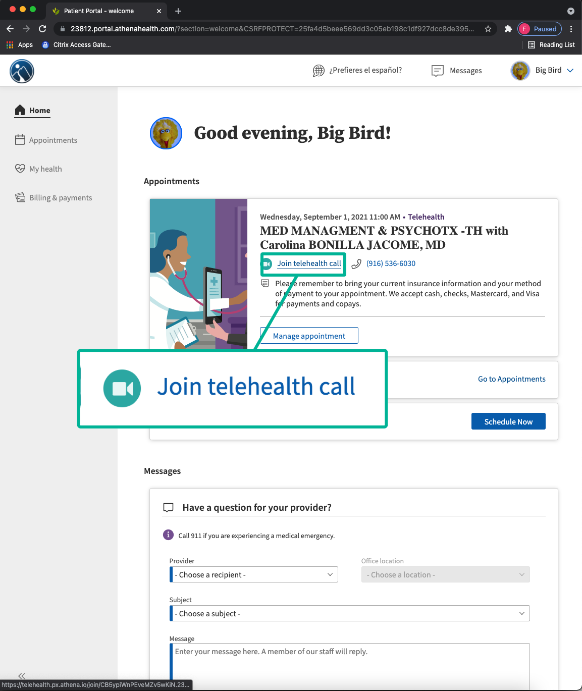 Image showing location of Telehealth button