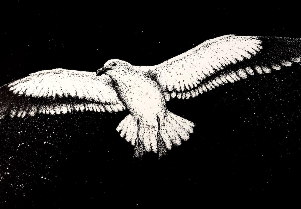 seagulls in the nl: villains