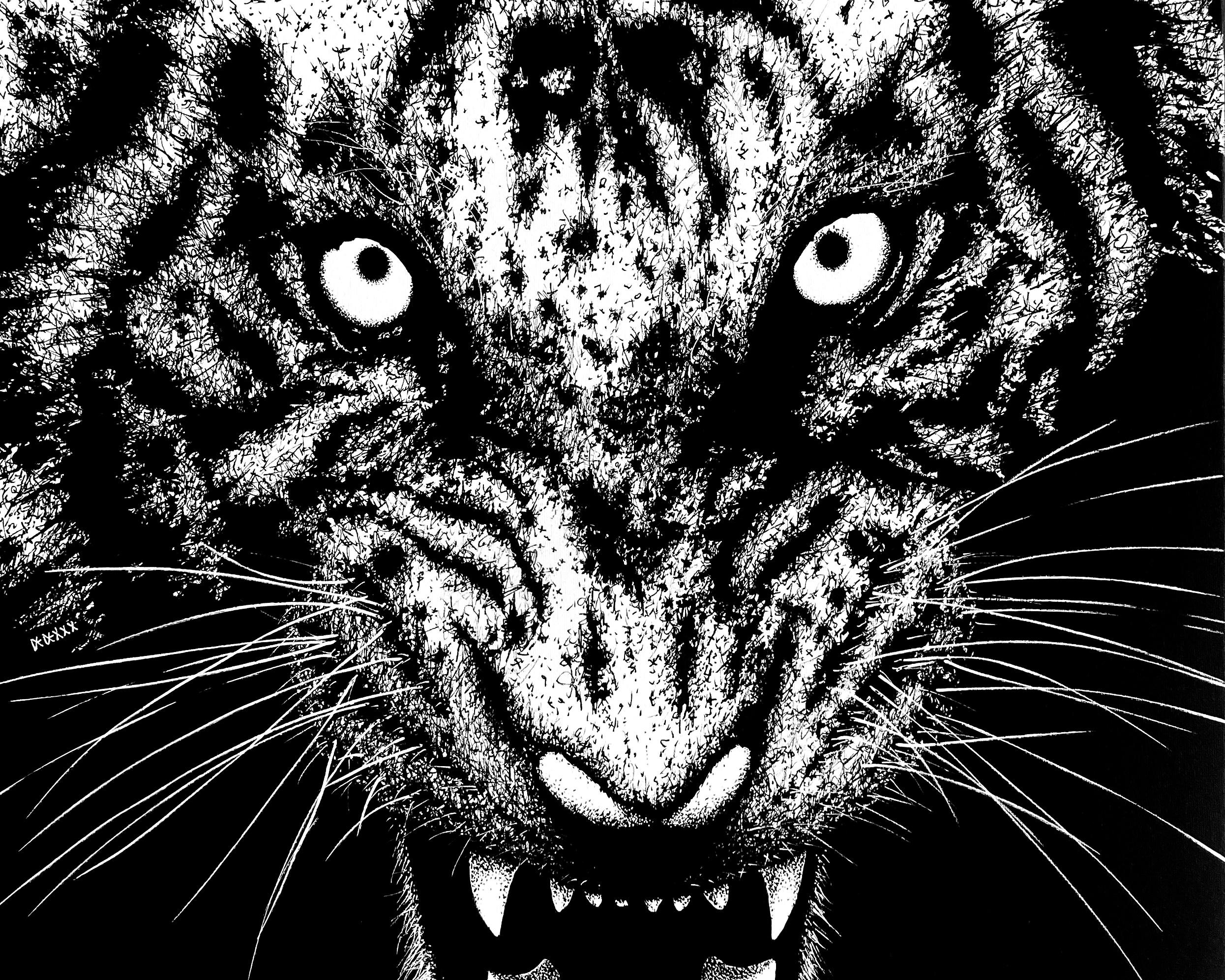 Tiger / Rewild 002