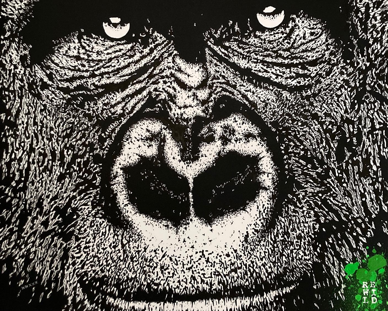Gorilla / Rewild 001