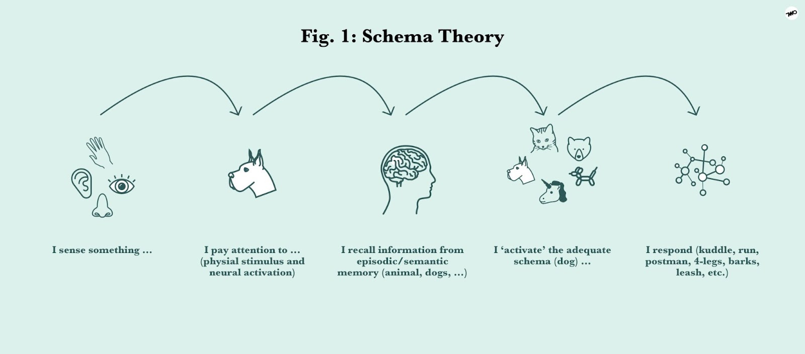 How Cognitive Schema affects human expectations