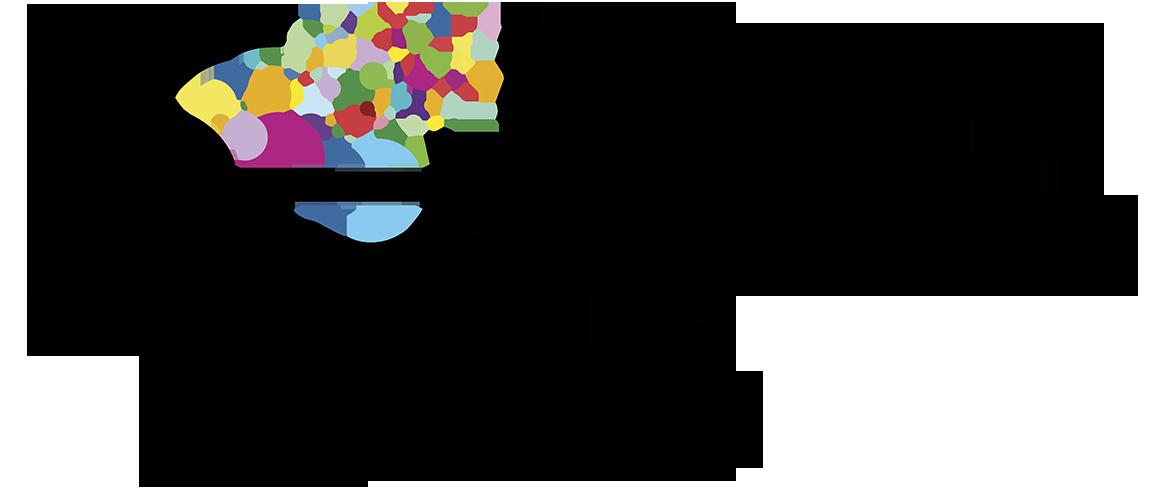 Virtual Learning Lab logo