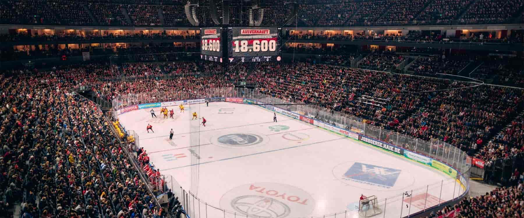 Stadion Haie Fans