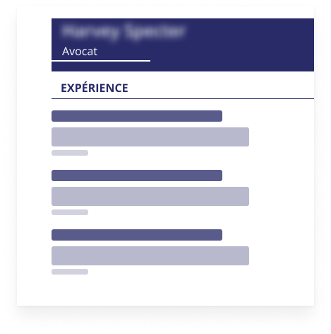 An anonymized resume