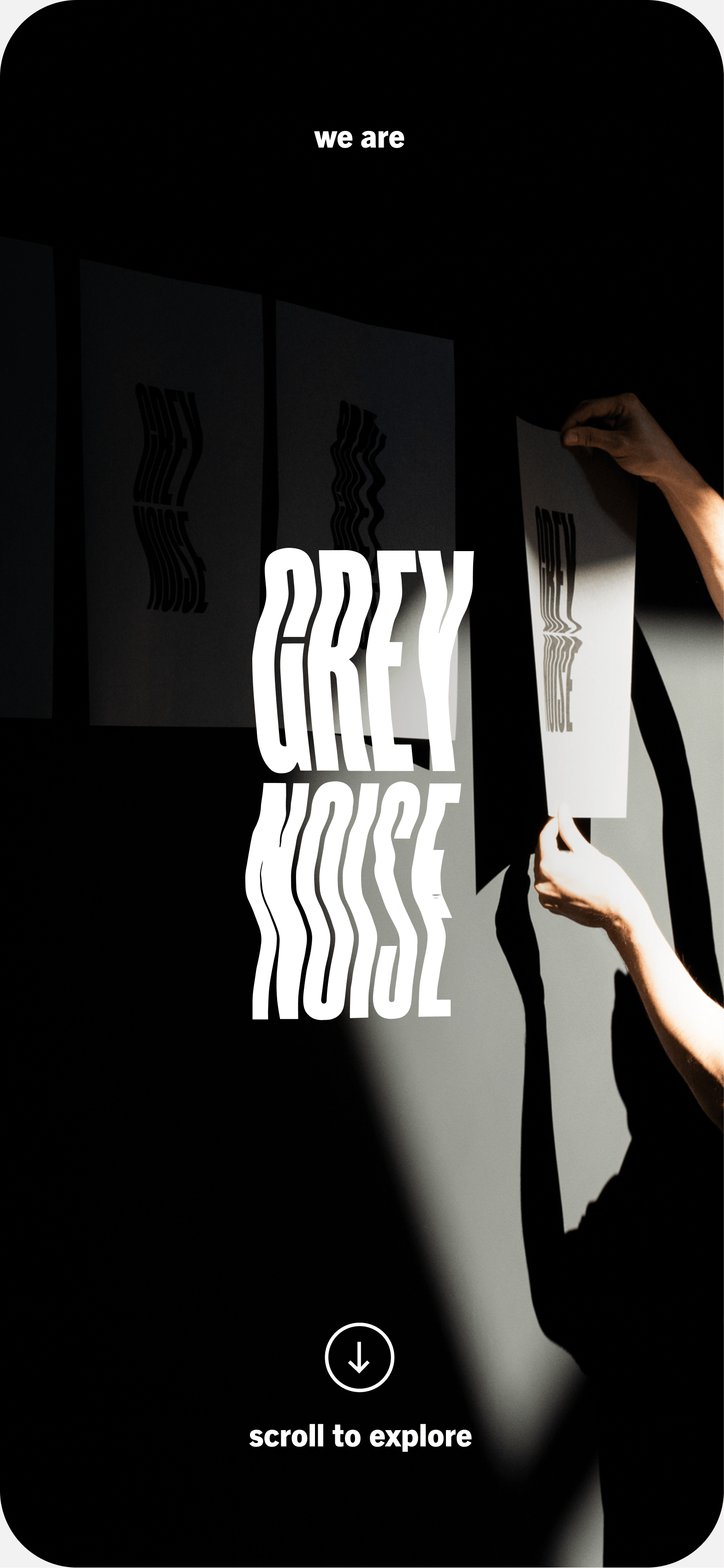 Preview of the greynoise  project