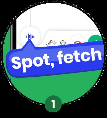 Say Spot Fetch Preview