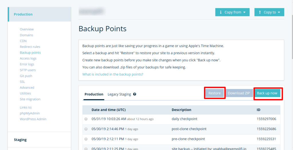 website backup timings on kinsta