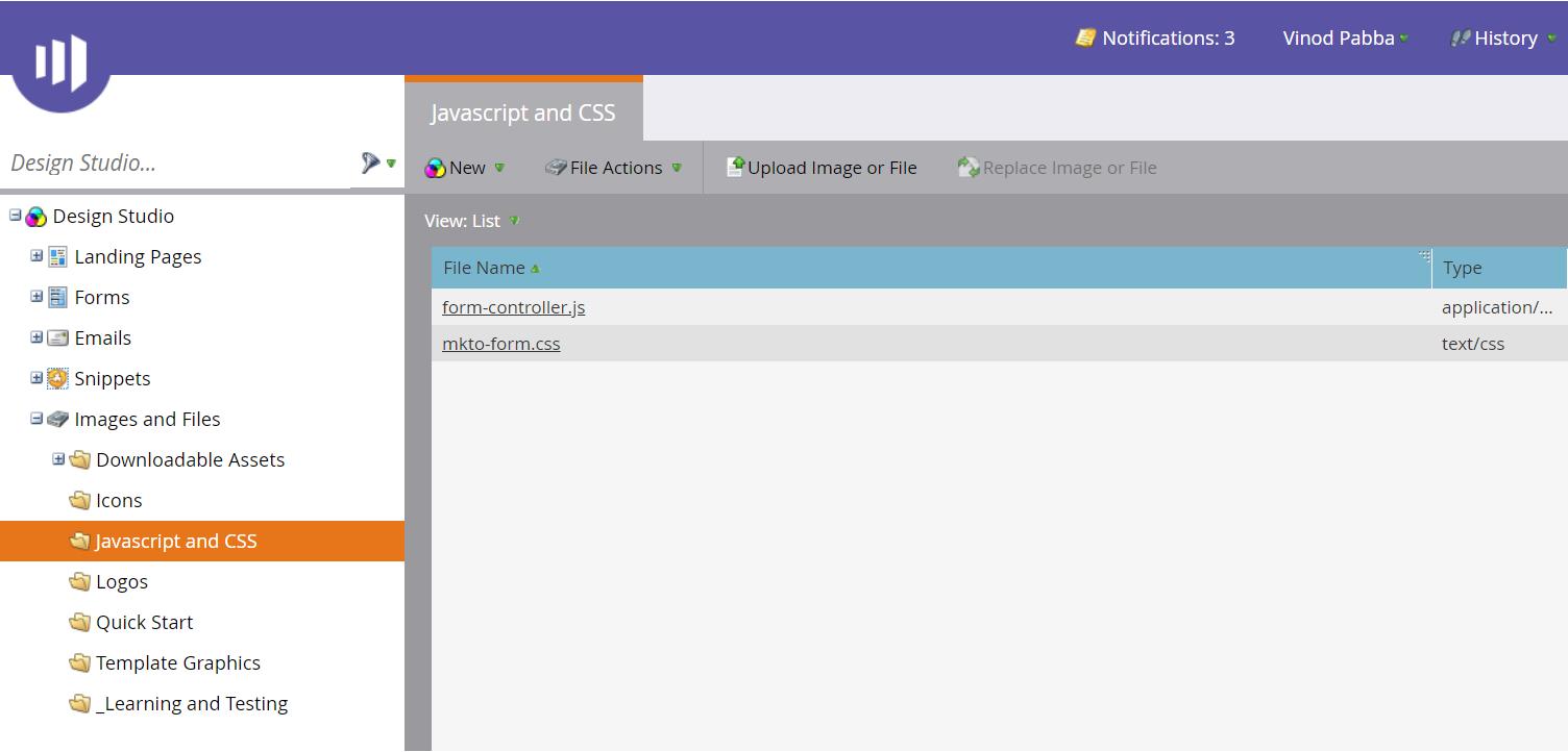 marketo javasciprt and CSS screen