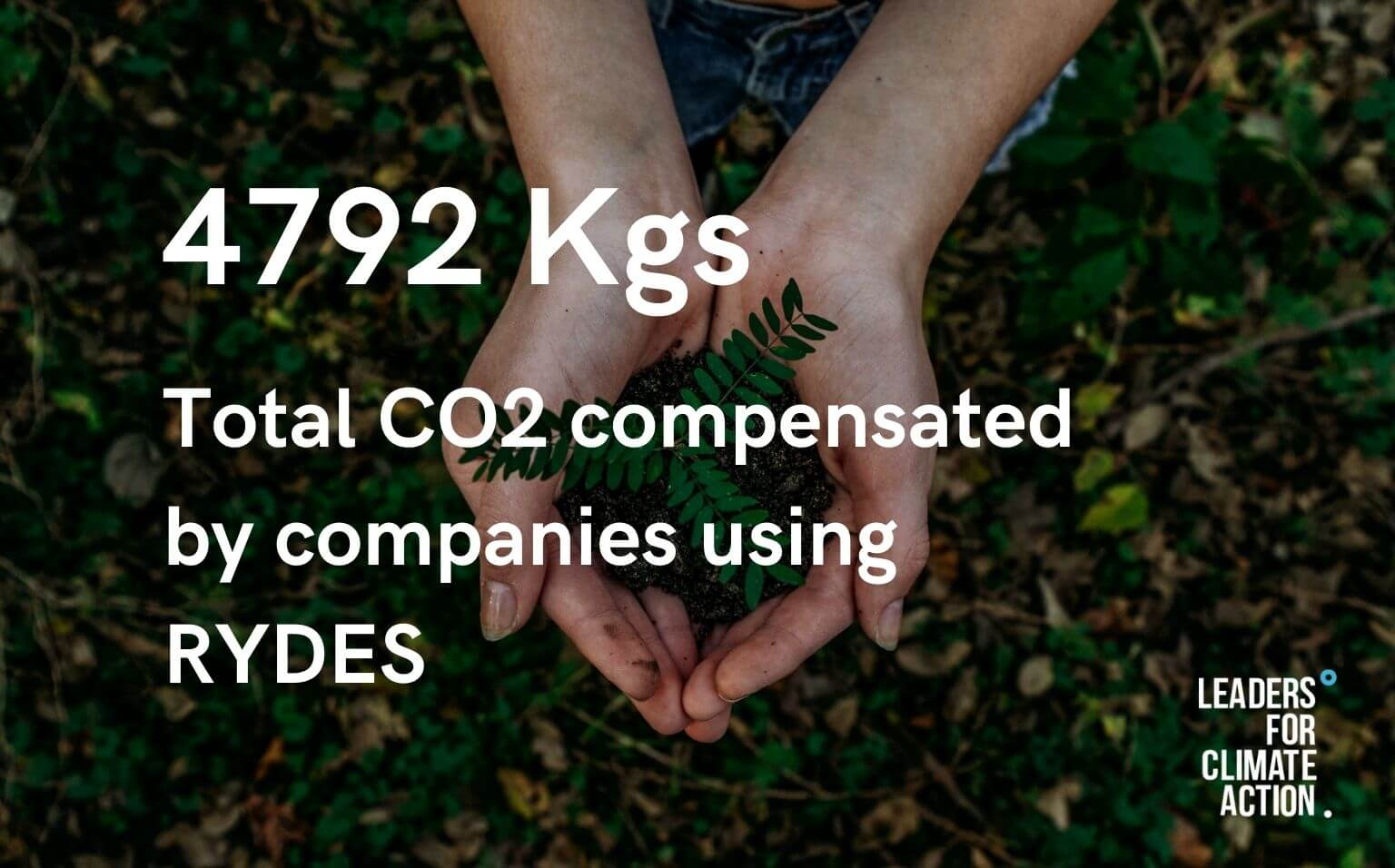 Total CO2 compensated by companies using RYDES