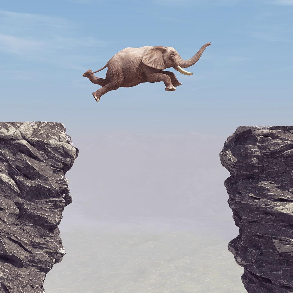 Springende Olifant