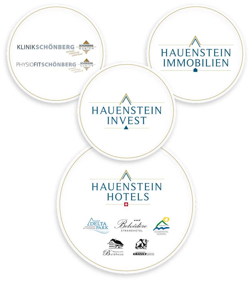 Markenkonstrukt der Hauenstein Gruppe