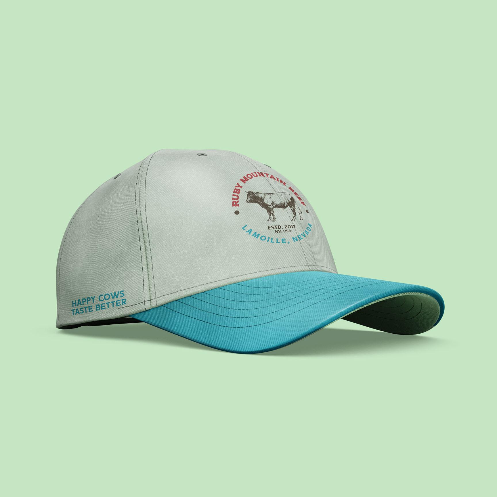 auxiliary logo baseball cap