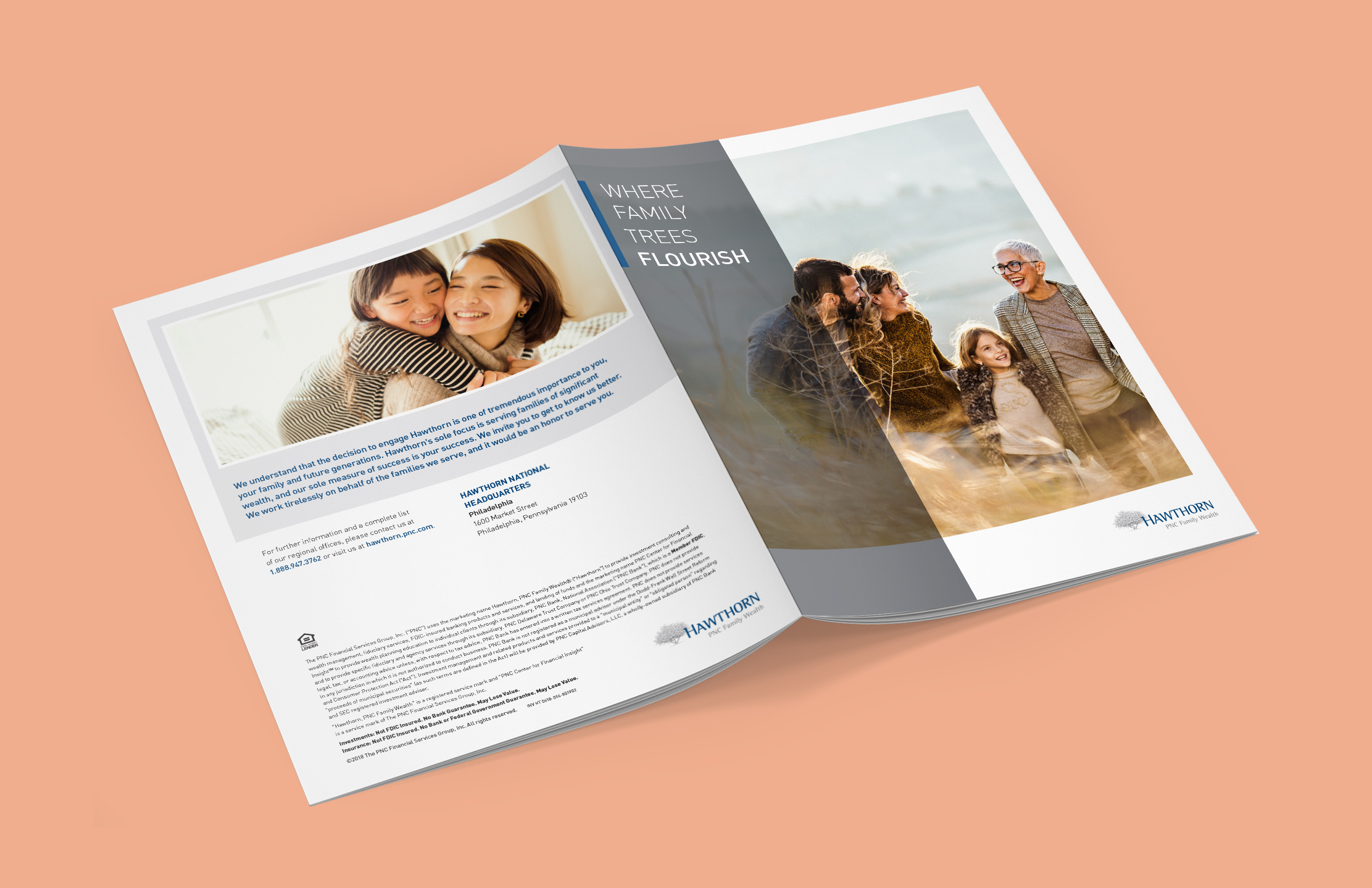 """A mockup of an open brochure, showing the front and back cover over a salmon-colored background. The front cover features a large image of a family walking through a field, with tall, semi-transparent gray bar over the left side. The bar features the white headline copy """"Where family trees flourish"""" next to a blue bar, anchoring it to the side of the page. The Hawthorn logo is in the bottom righthand corner of the page. The back features an image of a smiling parent with their child on their back, along with some dark blue copy and disclosure at the bottom."""