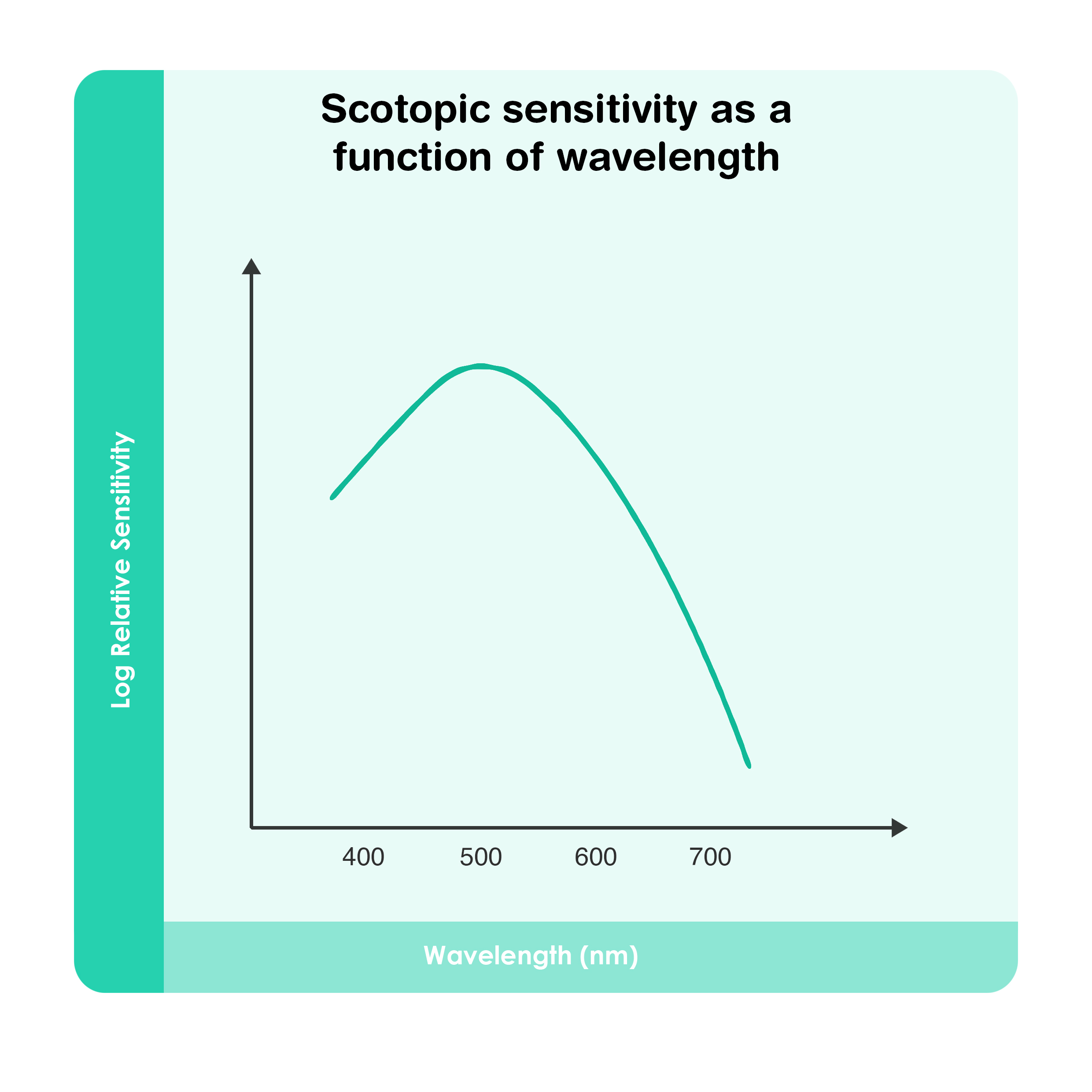 Scotopic sensitivity as a function of wavelength
