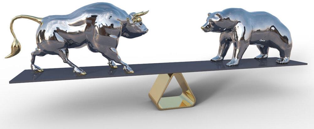 bull bear scale l-res web.jpg