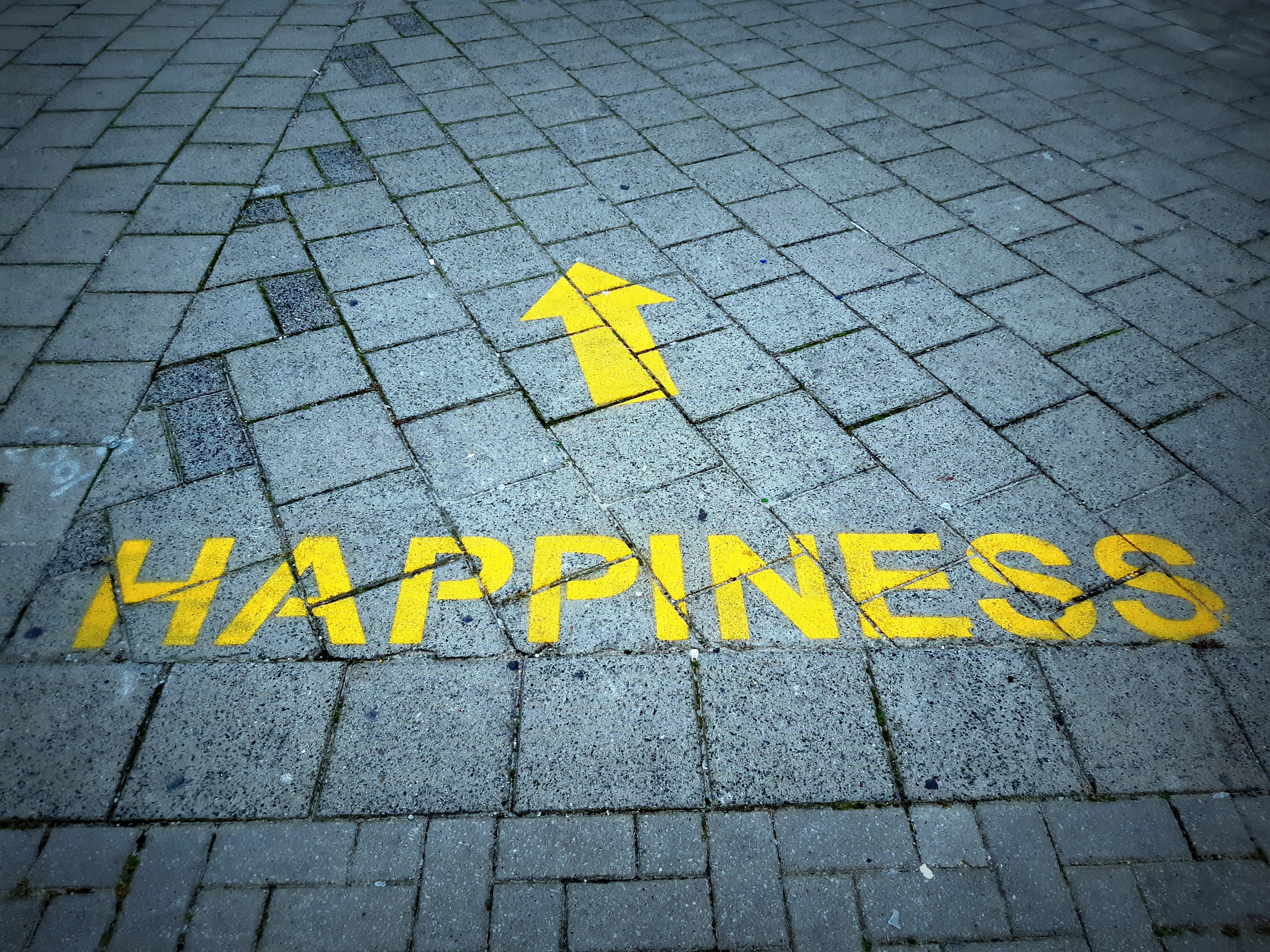 Finding Happiness and Meaning in the Time of COVID-19