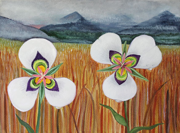 Two flowers in an ochre field in front of foggy mountains.  The flowers are white and have three petals each with a colorful center.