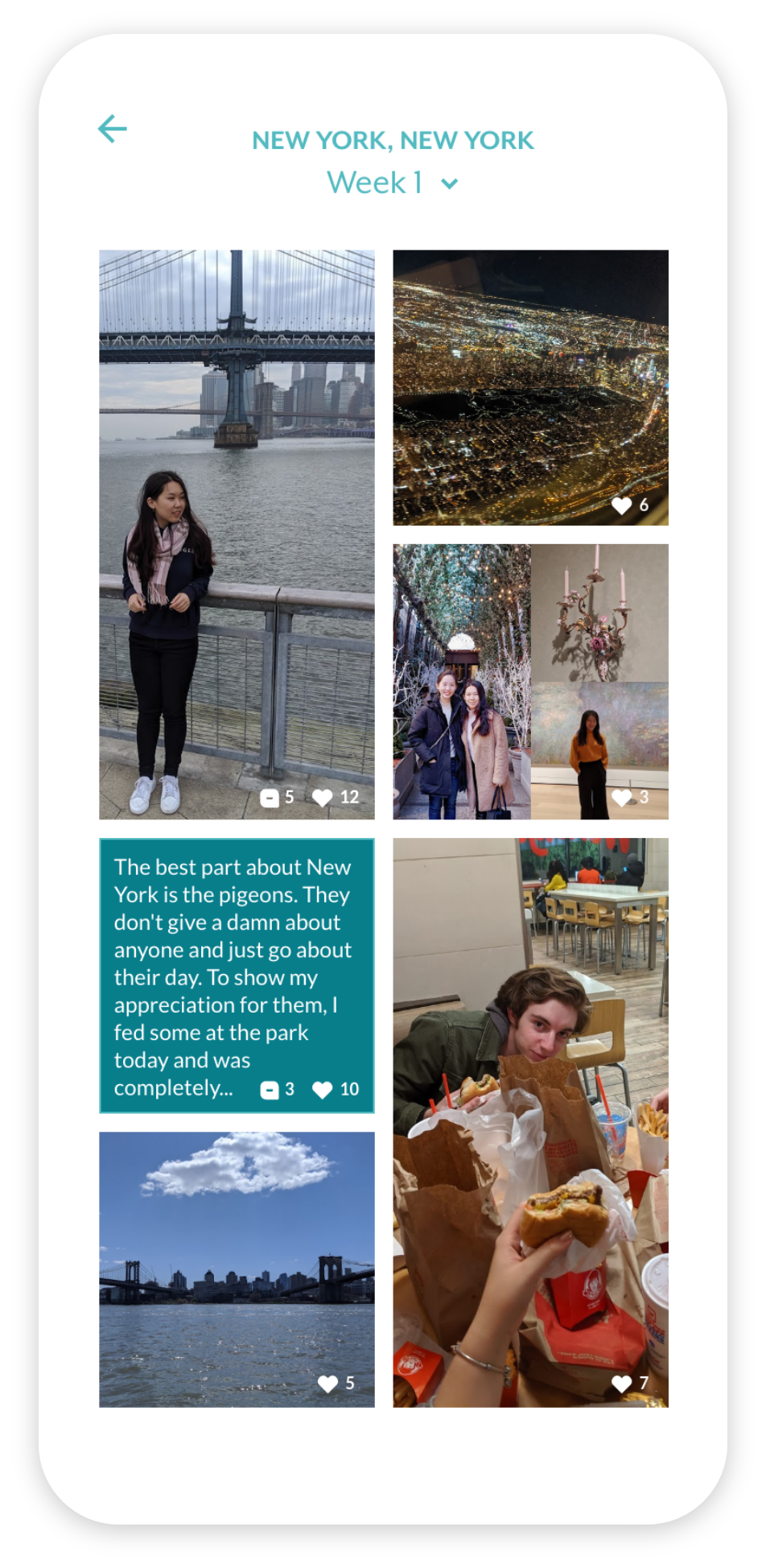 the 'quilt' of a trip, with images and text posts in a collage
