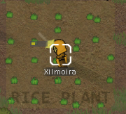 Rimworld character inspired while planting rice