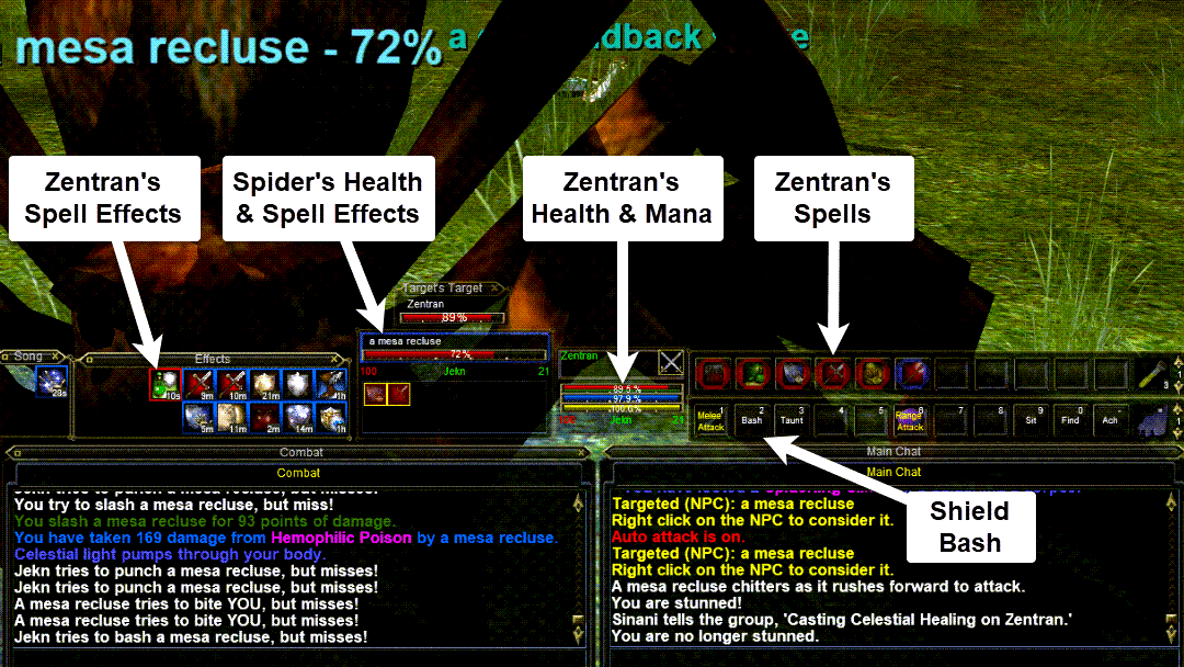 Everquest interface with spell and skill buttons