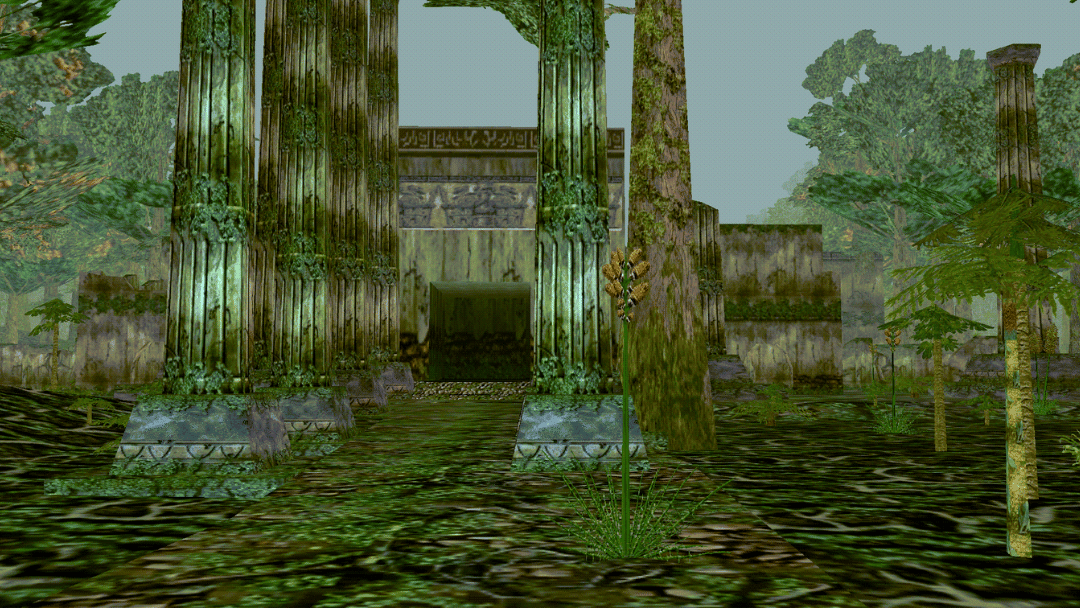 The Entrance to the City of Mist