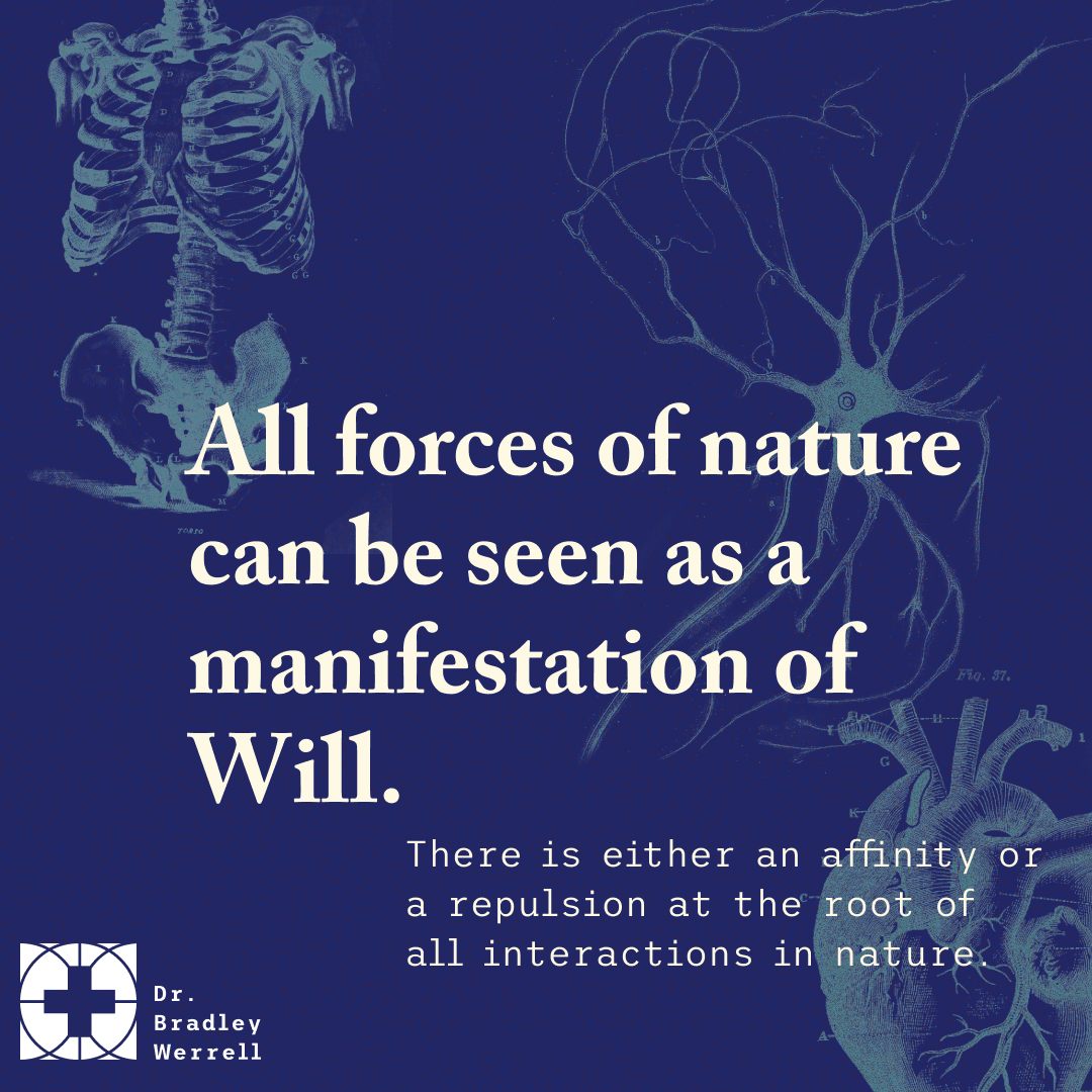 All forces of nature can be seen as a manifestation of will. There is either an affinity or a repulsion at the root of all interactions in nature.