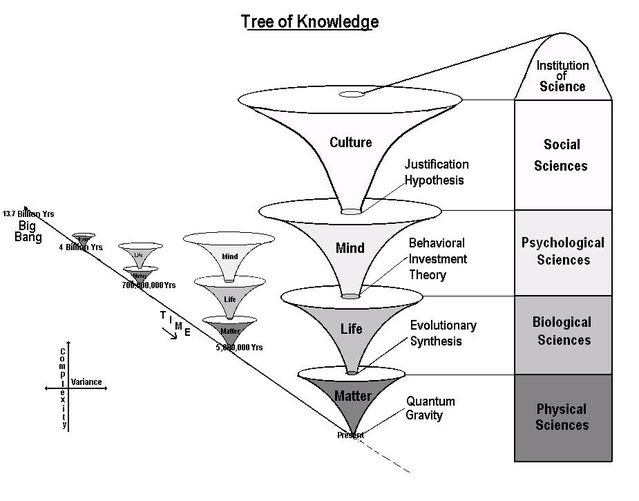 The Unified Theory of Knowledge's Tree of Knowledge - Gregg Henriques on the Best Medicine Podcast with Dr Bradley Werrell