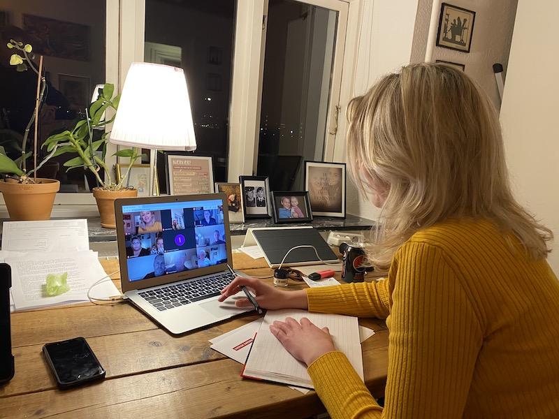 Onlinemøde under corona