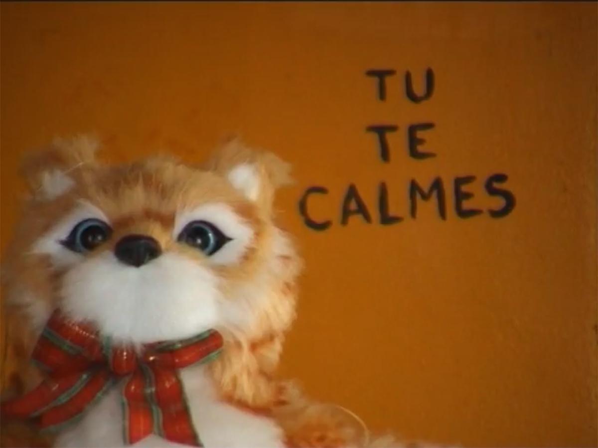 Tu Te Calmes