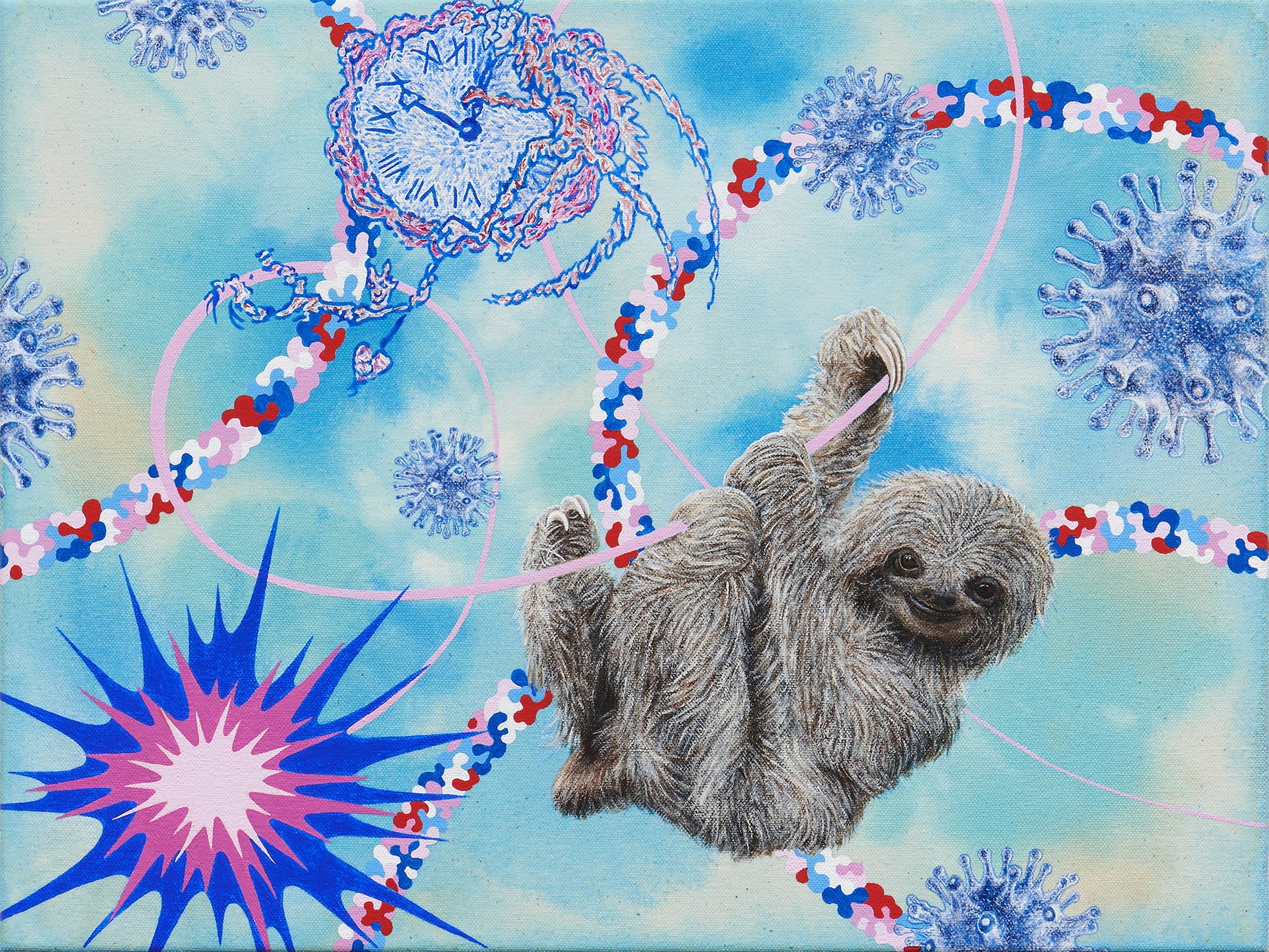 Kara Maria Sloth (pygmy three-toed sloth)