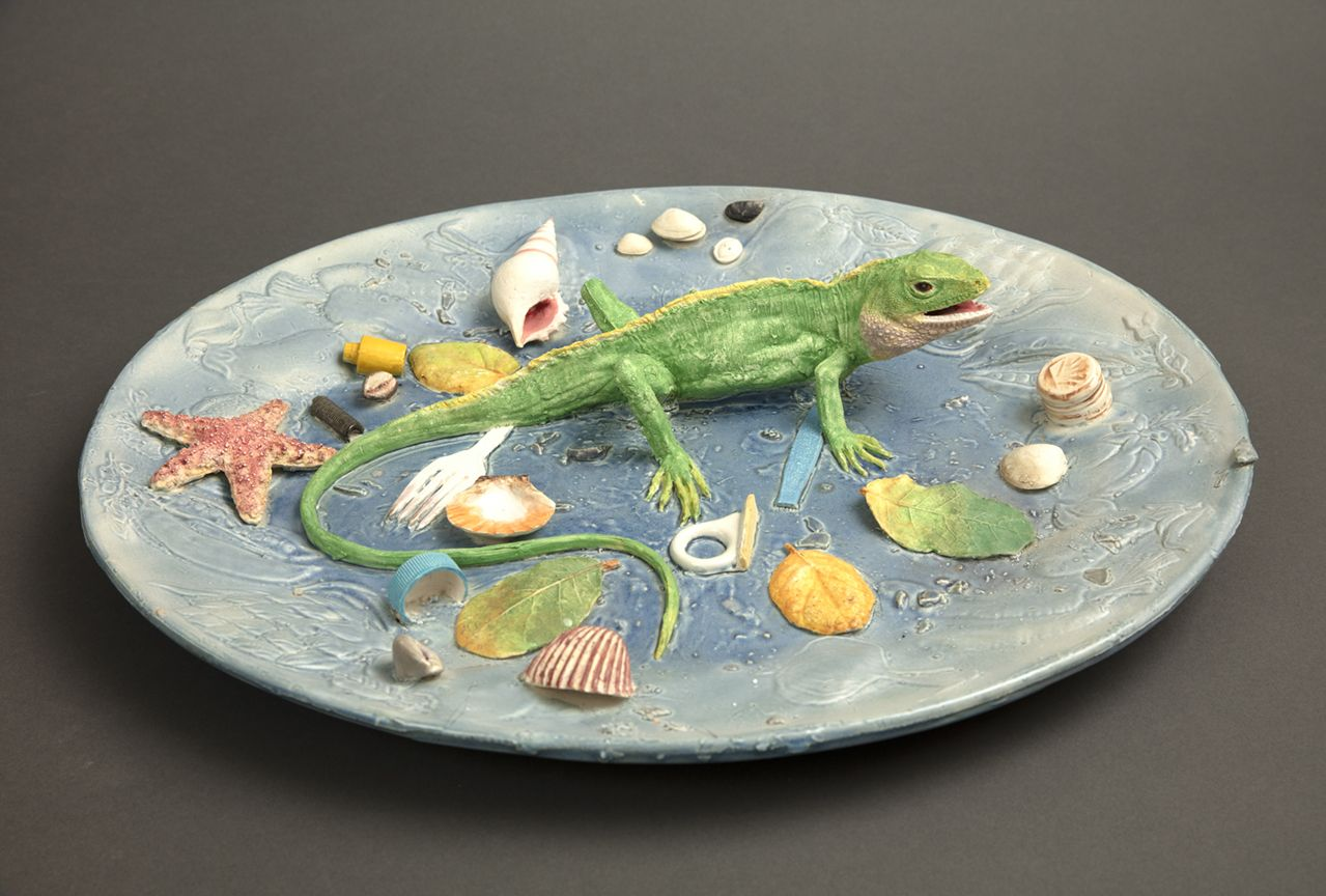 Richard Shaw Iguana at Low Tide