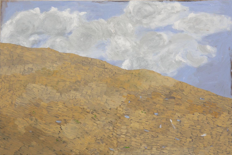 Martha Shaw Untitled (Hillside)