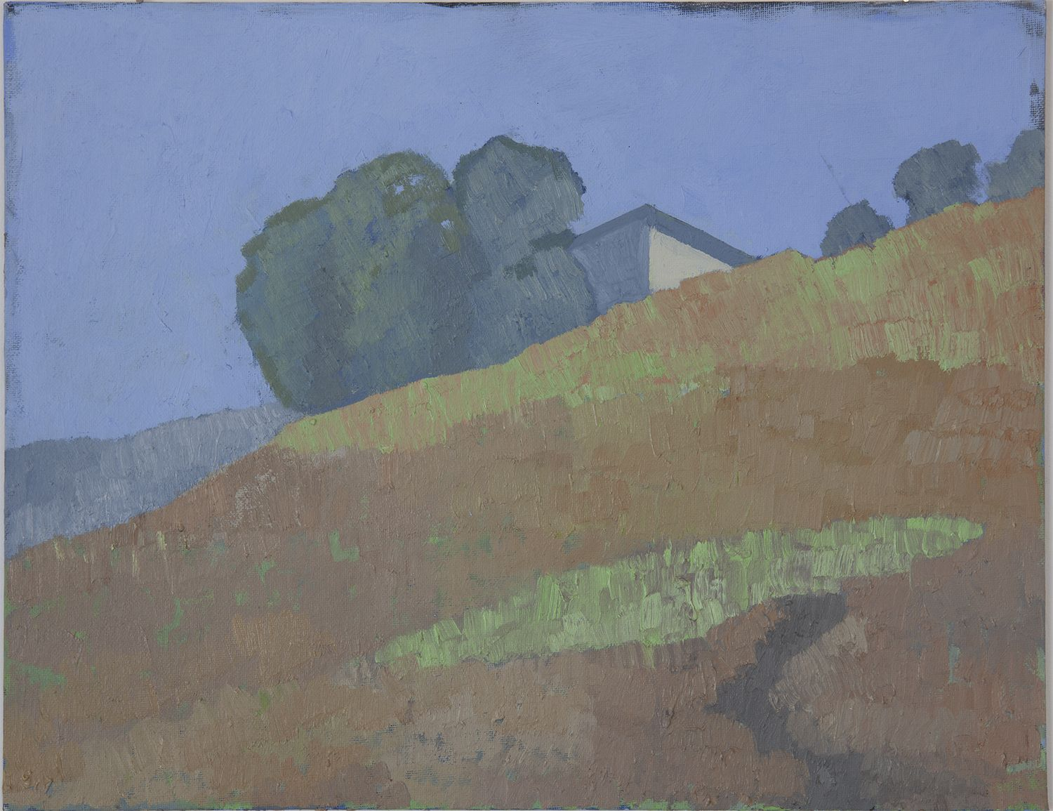 Martha Shaw Untitled (Hillside with House Detail)