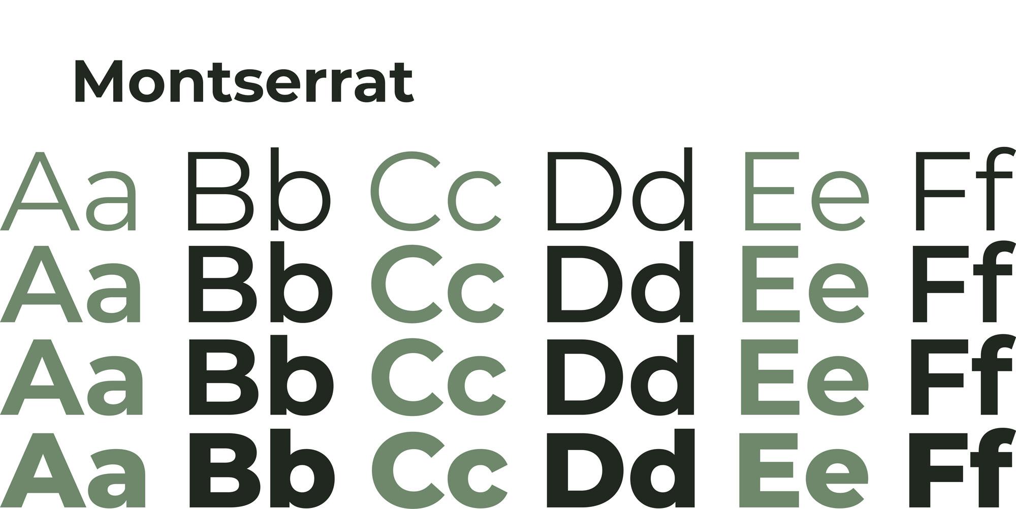 Illustrazione verde chiaro che descrive il carattere tipografico montserrat utilizzato per la brand identity di canottieri outdoor su sfondo bianco