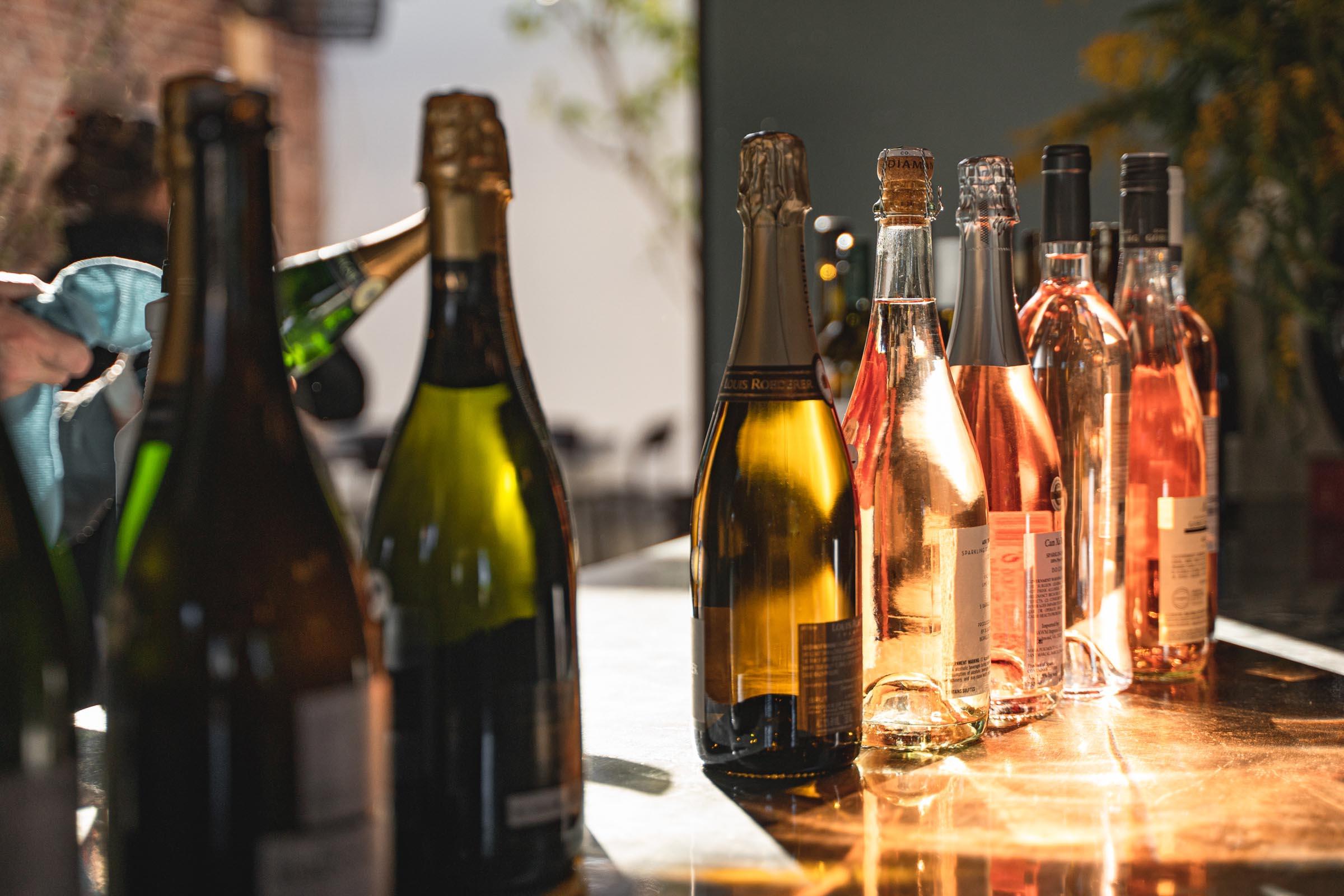 A Picture of wine bottles catching the morning sun