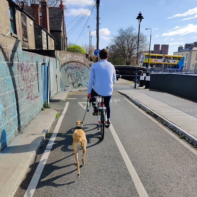 Bleeper user cycling with dog along dedicated cycle lane in Dublin.