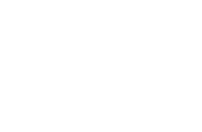 Microsoft Partner XPINION GmbH